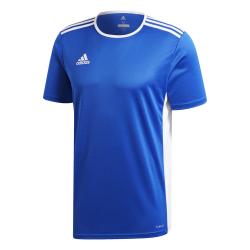 Camiseta entreno Adidas...