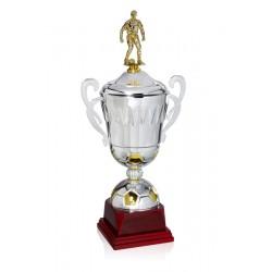 Trofeo copa de fútbol desde...