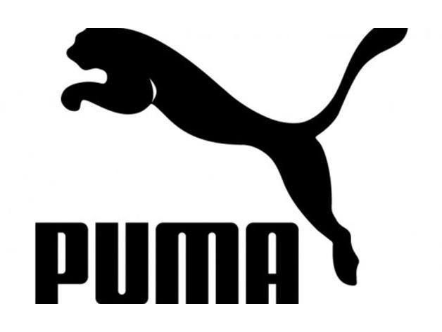 Botas de fútbol Puma Future 19.3 Netfit FG AG 10553901 97056222fba6b